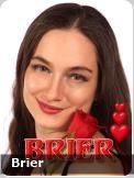 Brier